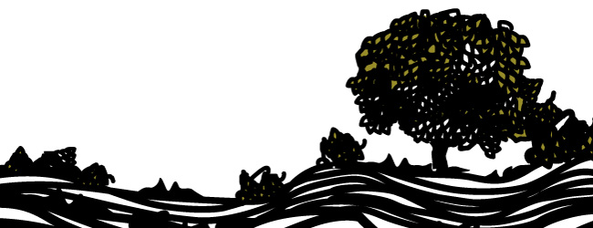 Trees of Lluçanès, illustrated by Montse Noguera